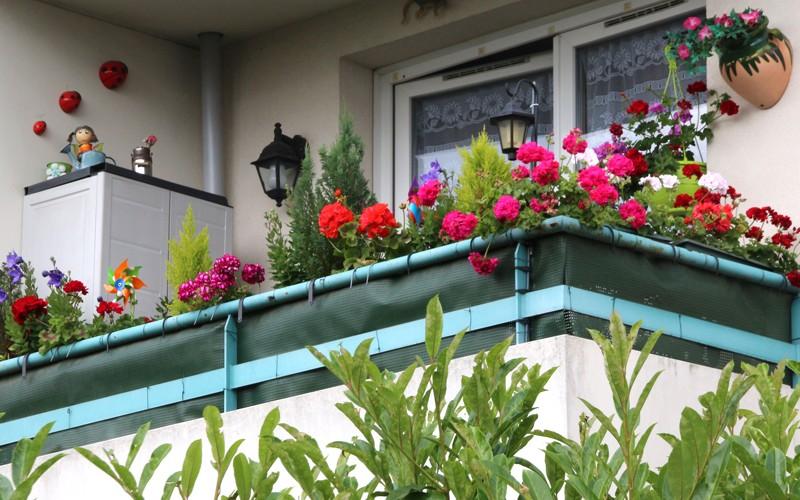 Concours de balcons et jardins fleuris